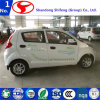 Best Price New Small Electric Car Shifeng D101rhd