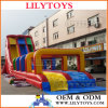 Big Sale 10% Discount Inflatable Water Slide, Inflatable Slide Game, Big Inflatable Slide