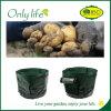 Onlylife PP Vegetable Grow Bag Green Economical Garden Planter