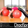 PVC Gym Floor for Training Class