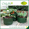 Onlylife Garden PE Fabric Reusable Vegetable and Fruit Grow Bag