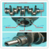 High Quality Yunnei Power Crankshaft
