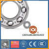 China 6000, 6200, 6300, 6400, 6800, 6900, 16000, 62200, 62300 Series Deep Groove Ball Bearing