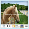 Galvanized Metal Horse Fence Animal Enclosure Fence