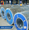 PPGI/PPGL/Ppcr Coil for Corrugated Roofing