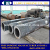 Roughcast Free Forging High Pressure Boiler Tube Made in China
