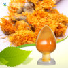 Factory Supply Natural Pigment Cryptoxanthin 5% 75% Zeaxanthin