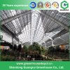 China Agriculture Multi-Span Plastic Greenhouse