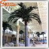 Hot Sale Fiberglass Artificial Coconut Palm Tree