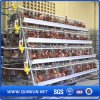 Chicken Cage for Poultry Farm for Nigeria
