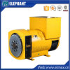 260kw 325kVA Synchronous Brushless AC Alternator with Ce Certifications