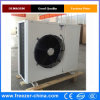 High Quality of Condensing Unit Refrigeration Unit for Cold Room
