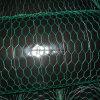 Hexagonal Wire Netting with Electro Galvanized Wire