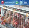 Hot Sell a Type Battery Layer Cage Price with Automatic Chicken Cage System (A3L90)