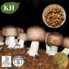 100% Natural Agaricus Blazei Mycelium Extract Polysaccharides