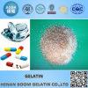Edible Gelatin Granular Bulk Price