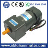 140W 220V AC Induction Geared Motor (6IK140)