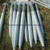 Hot DIP Galvanized Round Flange Plate Ground Screw