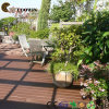 Composite Decking China with CE, SGS