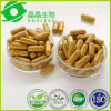 Private Label Available Health Supplement Turmeric Curcumin Capsule in Bulk