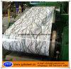 Printed Galvanized Steel Coils/PPGI