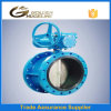 API Cast Iron Double Flange Butterfly Valve
