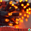 LED Christmas Light String for Decorations