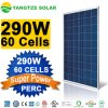 280W 285W 290W 60cells Super Power High Efficiency PV Solar Panel Manufacturers in China