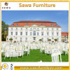Comfortable Wedding / Napoleon / Hotel Chair Wholesale