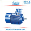Yb2 Explosion Proof Electric Engine with Ce, Exdi, Exd Iibt4 Certificate