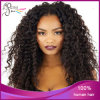 Very Pupolar Style Unprocessed Full Lace Wigs