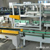 Automatic Carton Packing Machine for Bottle (WD-ZX15)