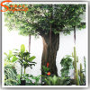 China Supply Artificial Fake Plastic Ficus Banyan Tree