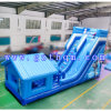 Giant Inflatable Water Slide for Children / Huge Bouncy Slide for Rental