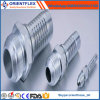 Carbon Steel/Stainless Steel Hydraulic Hose Fittings