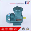 Yb3 Series Electric Fire Proof Motor with 380V High Voltage