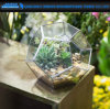 Geometric Pyramid Terrarium Candle Tea Light Holder Plant Vase