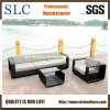 Wicker Outdoor Furniture/Antique Sofa/Outdoor Sofa (SC-B8916-B)