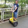 Self Balance Electric Scooter Ecorider Personal Vehicle
