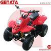 50cc/70cc/90cc/110cc Kids ATV Dinosaur (ATV-2 Series)