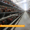 A Type Automatic Layer Rearing Cage Equipment for Sale