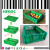 Collapsible Plastic Fruit and Vegetable Crate