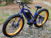 Green Power Lithium Battery Middle Motor Fat Electric Bike with En15194