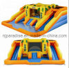 Inflatable Water Slide (CH-1014)