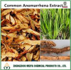 Natural Herb China Origin Common Anemarrhena Rhizome Extract with 5: 1-20: 1