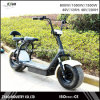 2017 Newest 1000W Fashinable City Coco Roof Scooter