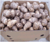 New Crop Fresh Chinese Taro for Exporting