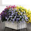 Cheap Artificial Aglaia Odorata Lour Flower Bouquetdecorative Flower Wholesale