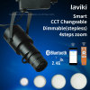 12W Remote Control CCT Changeable Beam Angle Adjustable LED Track Spot Light with Zoom and Dimming