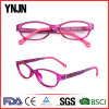 China Factory Ynjn Fashion New 2017 Eyeglasses Frames (YJ-G81078)